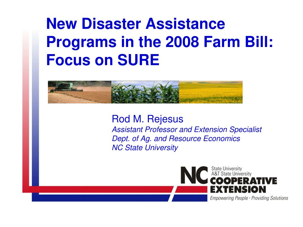 new disaster assistance programs in the 2008 farm bill focus on sure l.