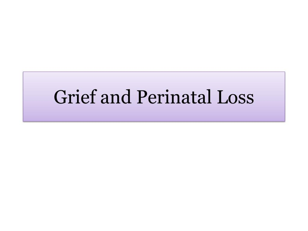 grief and perinatal loss l.