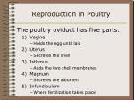 reproduction in poultry42