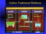 cultivo tradicional rotiferos