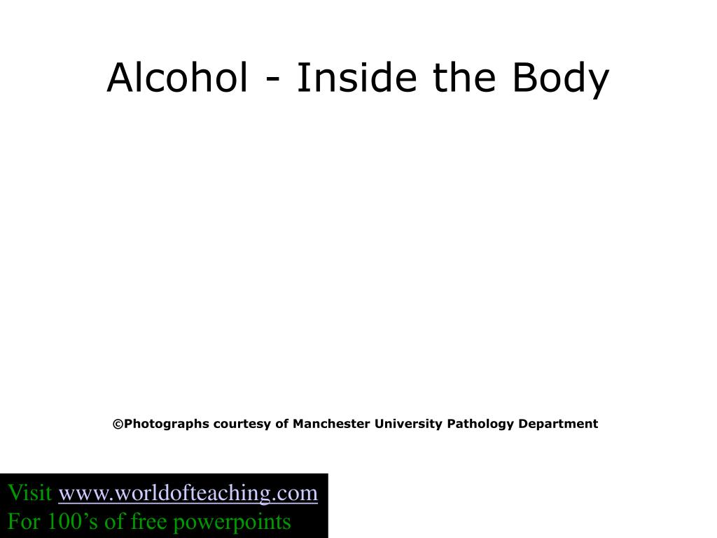 alcohol inside the body l.