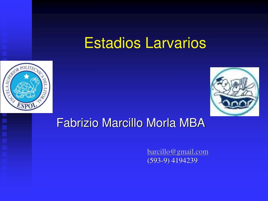 estadios larvarios l.