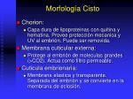 morfolog a cisto
