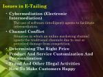 issues in e tailing15