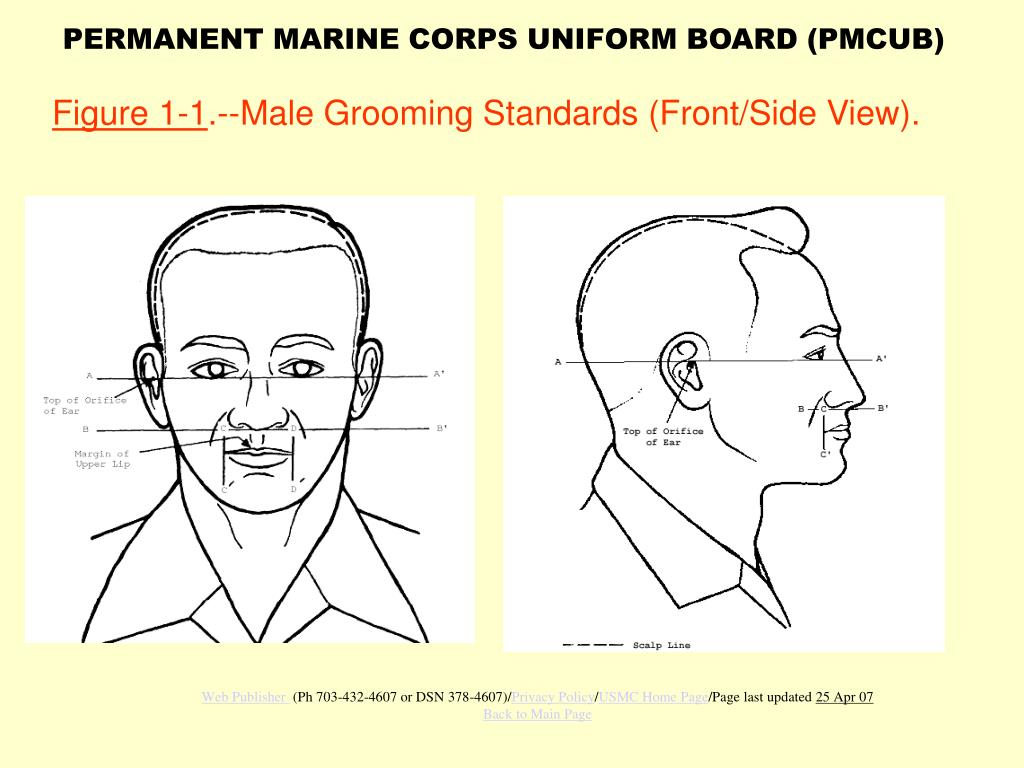 figure 1 1 male grooming standards front side view l.