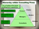 hierarchy within consulting firms