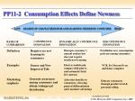 pp11 2 consumption effects define newness
