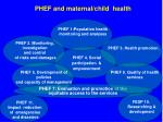 phef 7 evaluation and promotion of the equitable access to the services