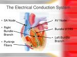 the electrical conduction system