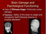 brain damage and psychological functioning
