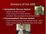 divisions of the ans
