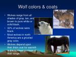 wolf colors coats