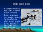 wolf pack size