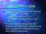 your eye and the sights