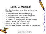 level 3 medical
