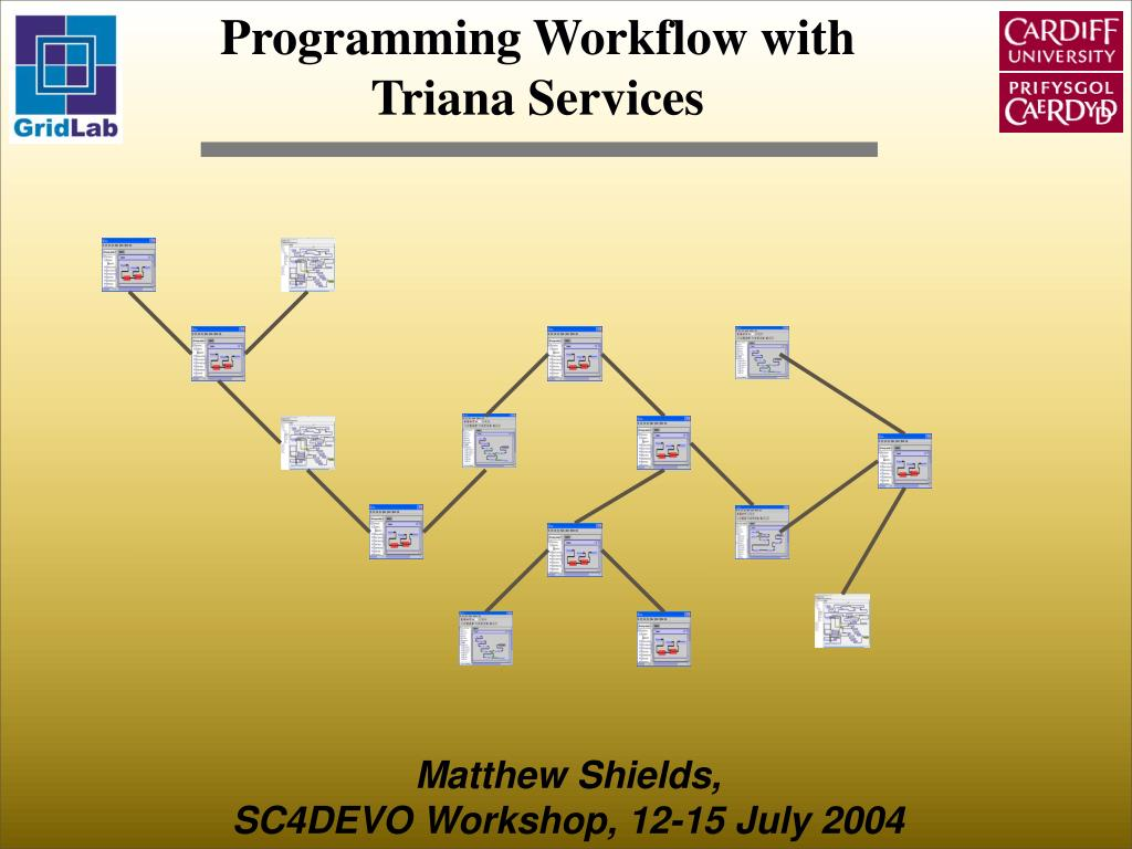 programming workflow with triana services l.