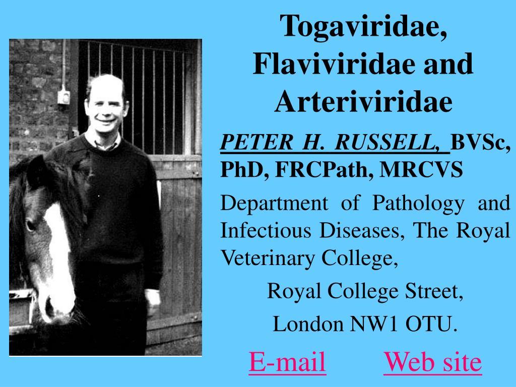 togaviridae flaviviridae and arteriviridae l.