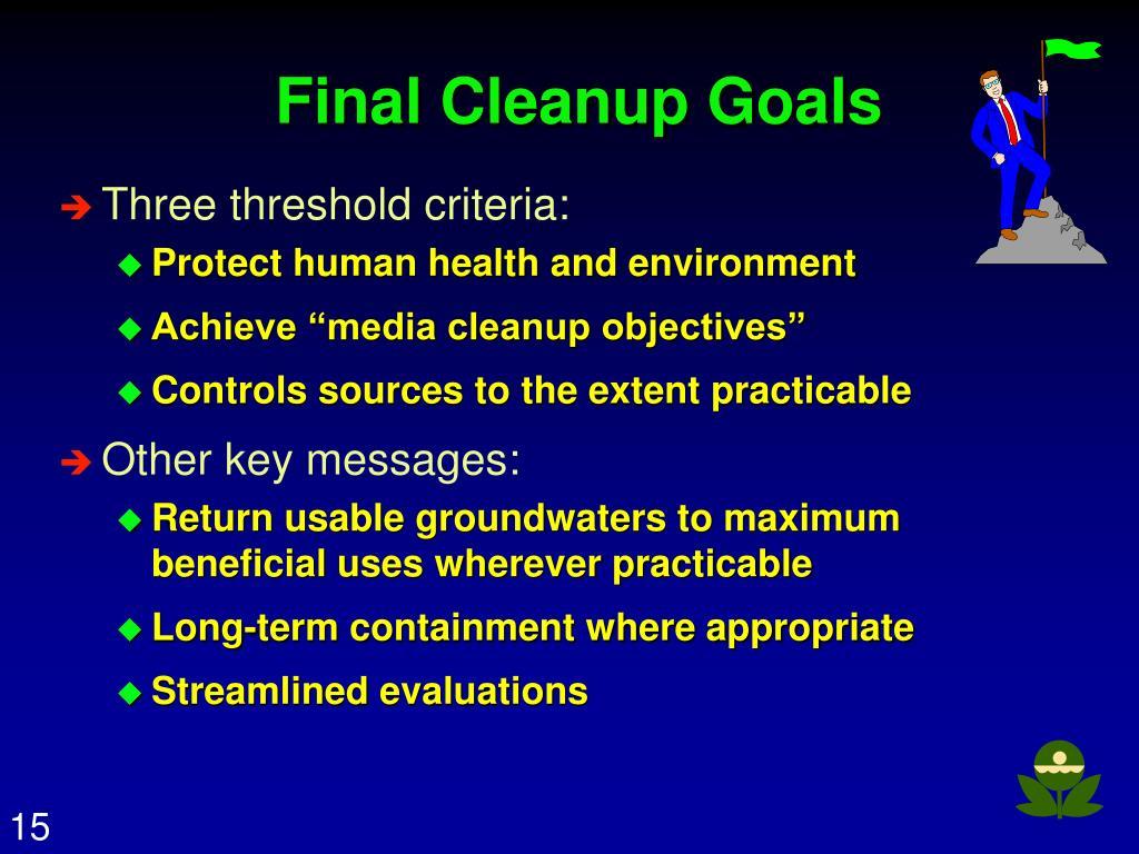 Final Cleanup Goals
