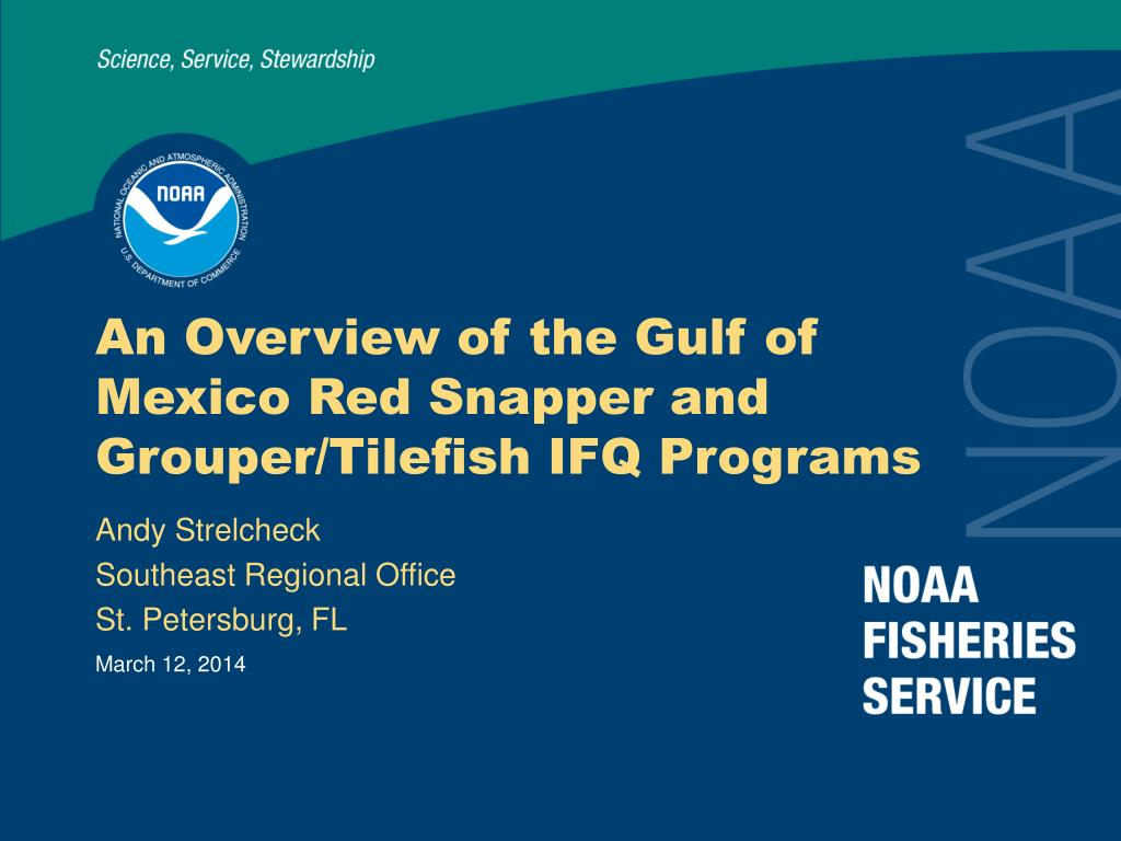 an overview of the gulf of mexico red snapper and grouper tilefish ifq programs l.