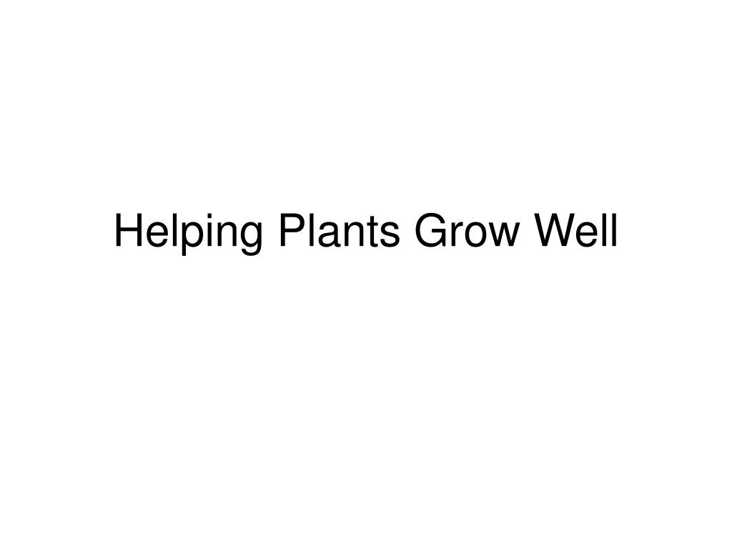 helping plants grow well l.