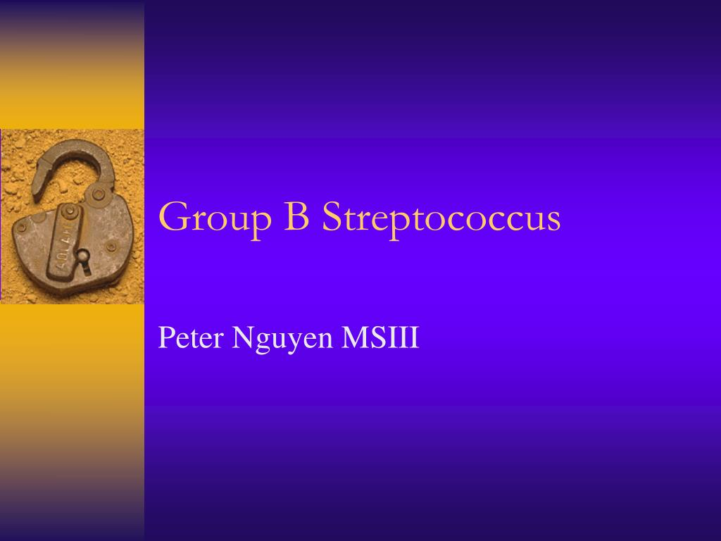 group b streptococcus l.