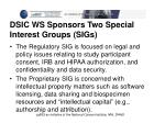 dsic ws sponsors two special interest groups sigs