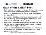 goals of the cabig pilot