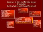 spectrum of work for mch life course organization building public health social movement