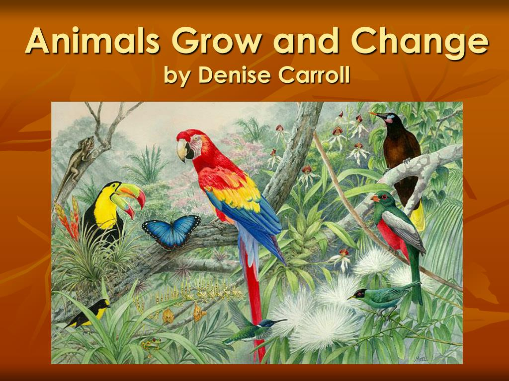 animals grow and change by denise carroll l.