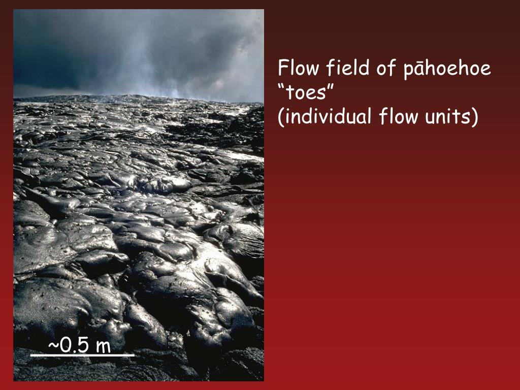 Flow field of p