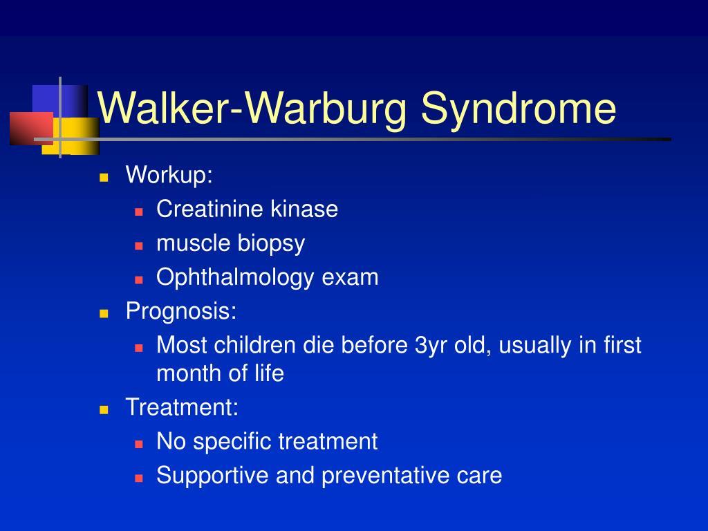 Walker-Warburg Syndrome