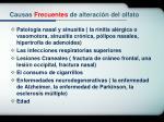 causas frecuentes de alteraci n del olfato