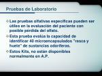 pruebas de laboratorio26