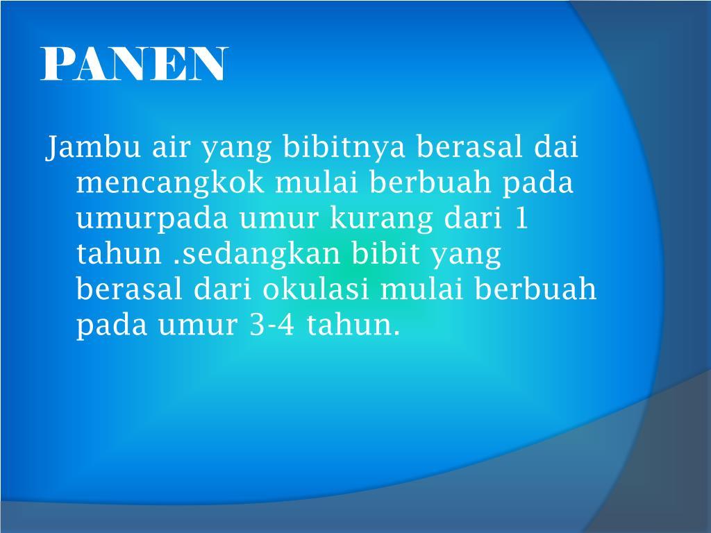 PANEN