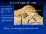 lateral process of talus
