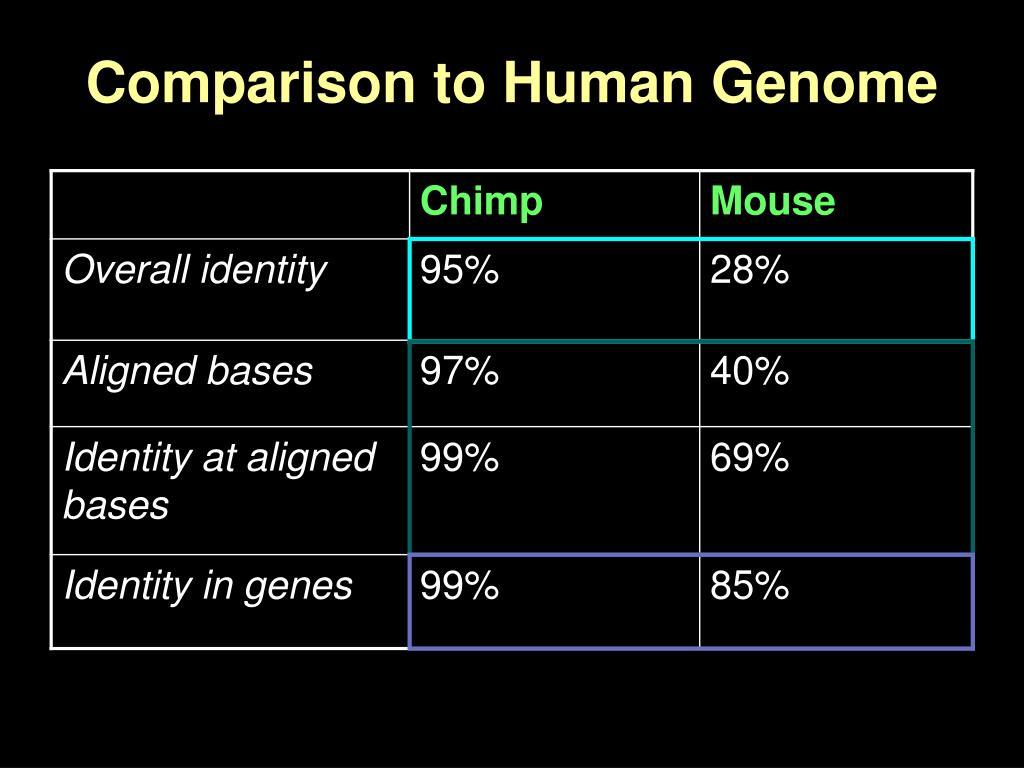 Comparison to Human Genome