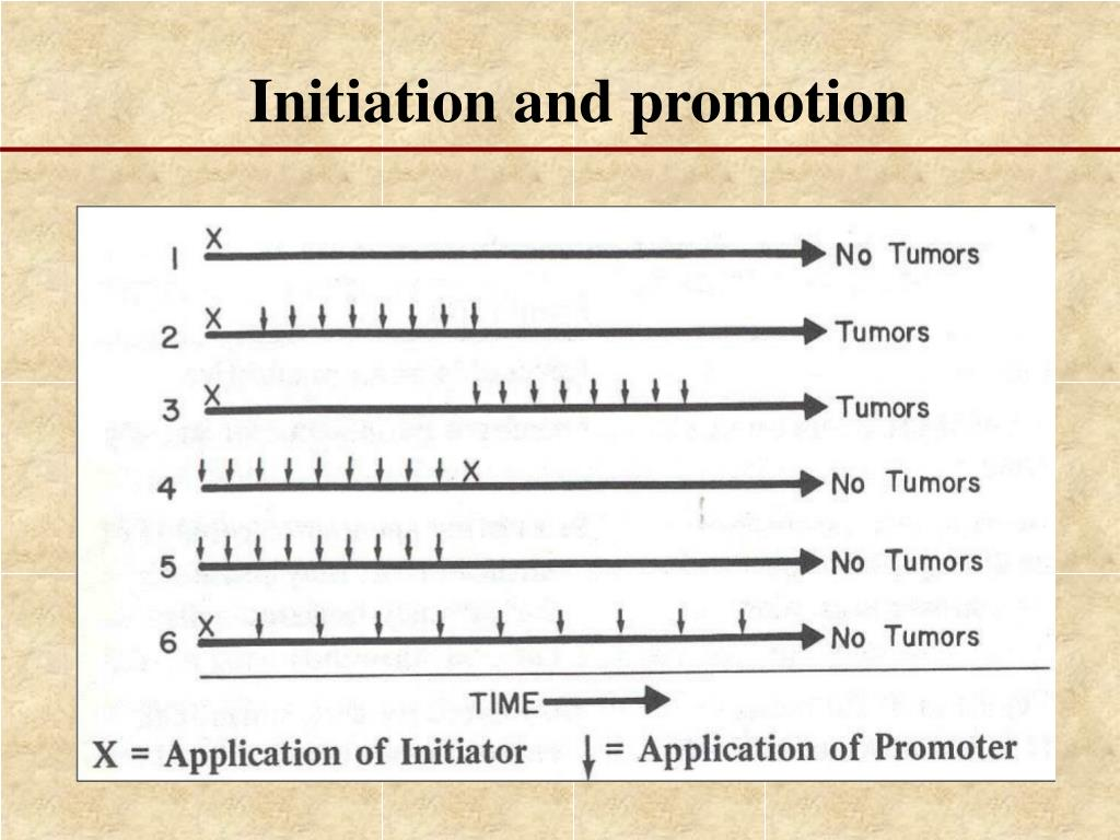 Initiation and promotion