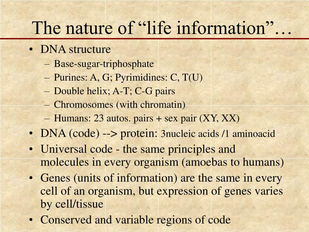 """The nature of """"life information""""…"""