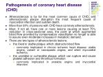 pathogenesis of c oronary h eart d isease chd