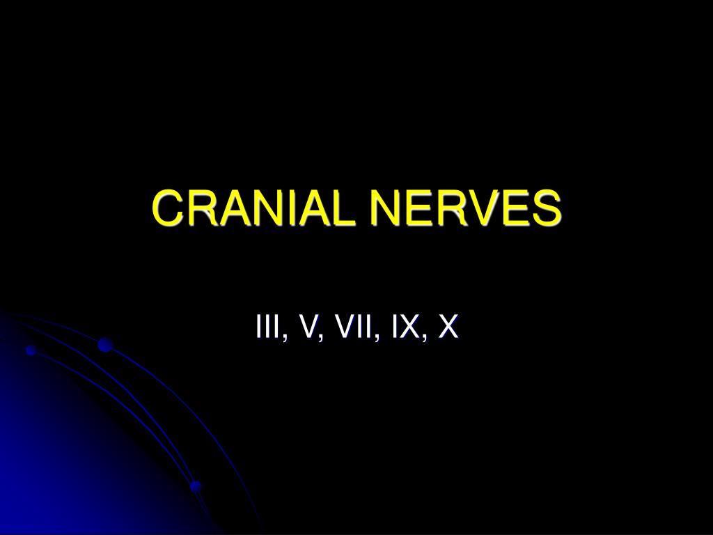 cranial nerves l.