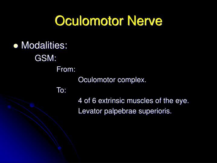 Oculomotor nerve