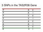 3 snps in the tas2r38 gene