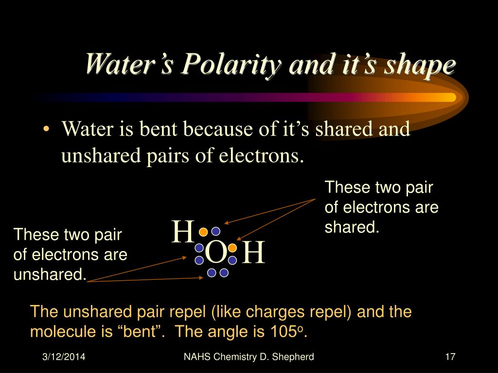 Water's Polarity and it's shape