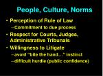 people culture norms