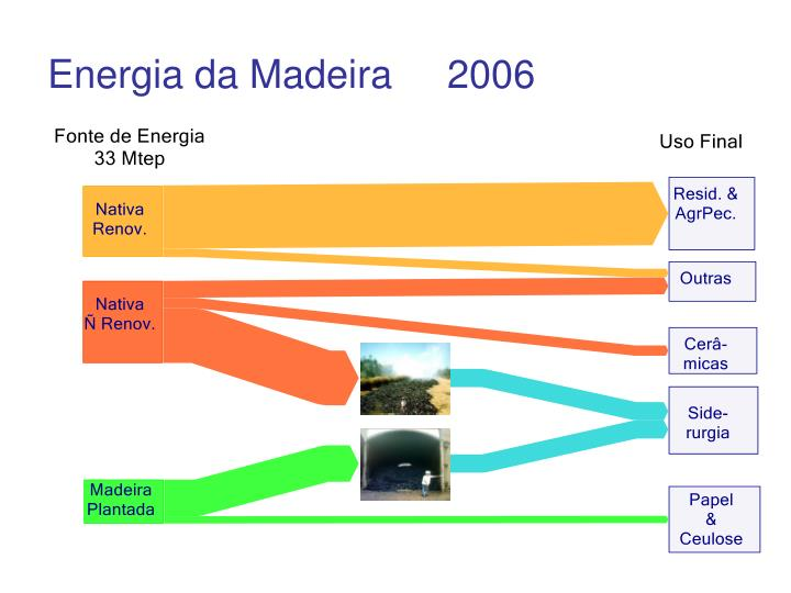 Energia da Madeira     2006