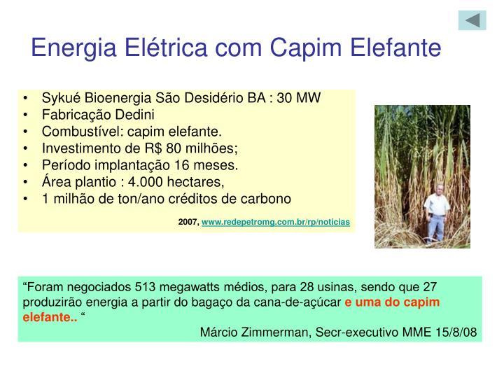 Energia Elétrica com Capim Elefante