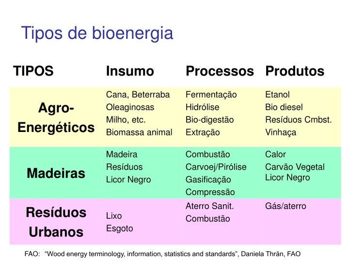 Tipos de bioenergia