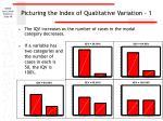 picturing the index of qualitative variation 1