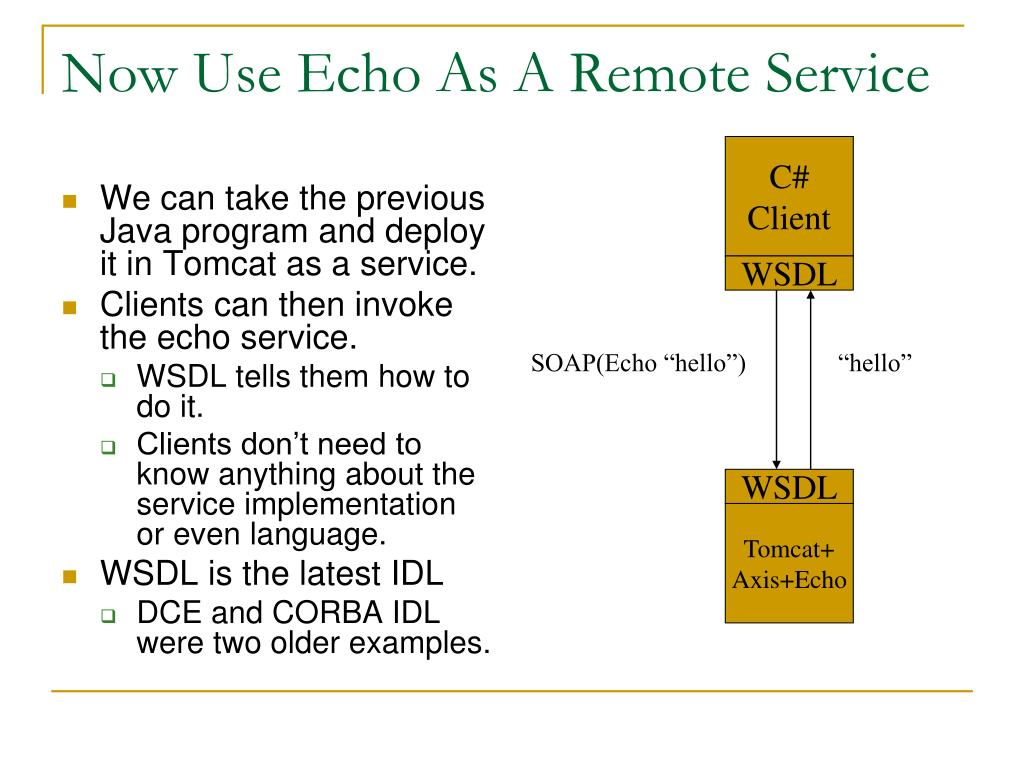 Now Use Echo As A Remote Service
