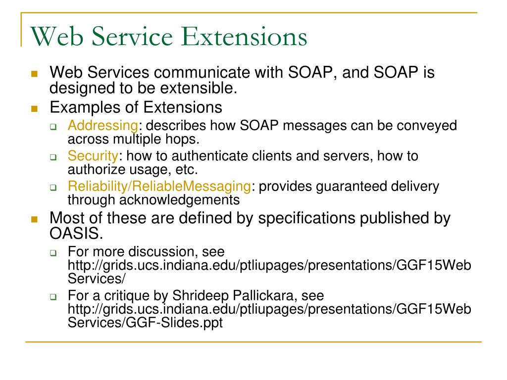 Web Service Extensions